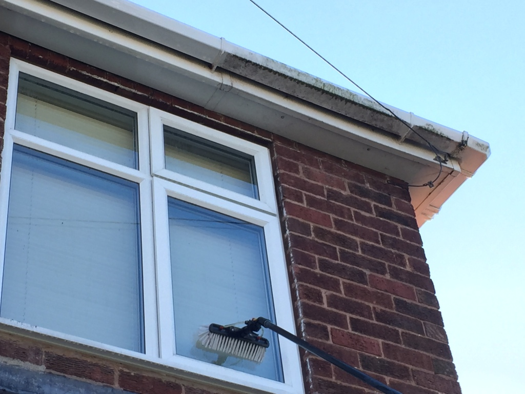Window cleaning in Shrewsbury using a water fed pole (safety first)